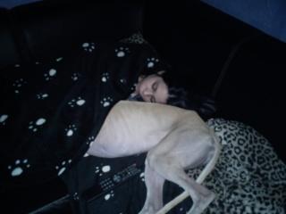 Posture originale pour dormir....et chez vous c'est comment??? - Page 4 Dsc00210