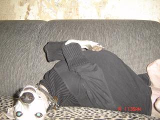 Posture originale pour dormir....et chez vous c'est comment??? - Page 4 Dsc04910