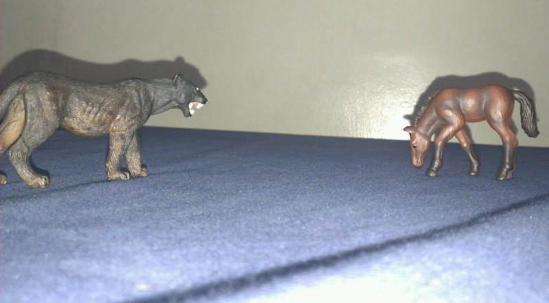 My Schleich Melanistic Leopard Panthe11