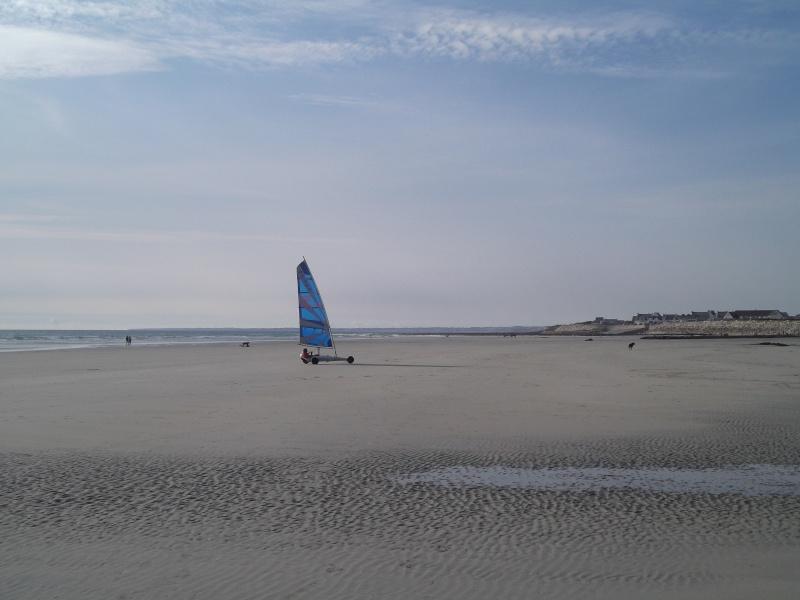 Quelques Photos de vacances pour montrer qu'en Bretagne il fait BEAU et c'est le pied !!! Dscf1711