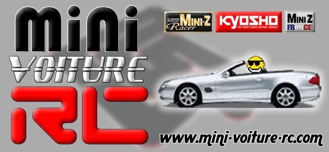 Vote concours de Logo Mini-Voiture-RC Sans_t11