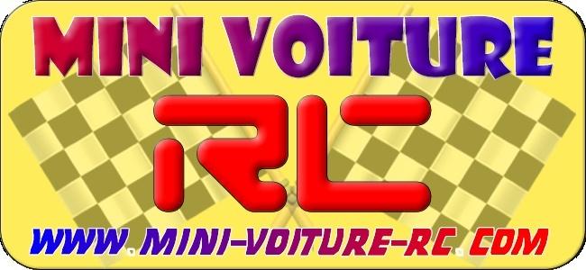 Vote concours de Logo Mini-Voiture-RC Sans_t13