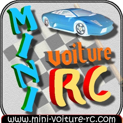 Vote concours de Logo Mini-Voiture-RC Sans_t14
