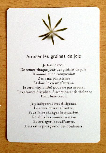 Les Tarots Divinatoires - Page 5 C_rose10