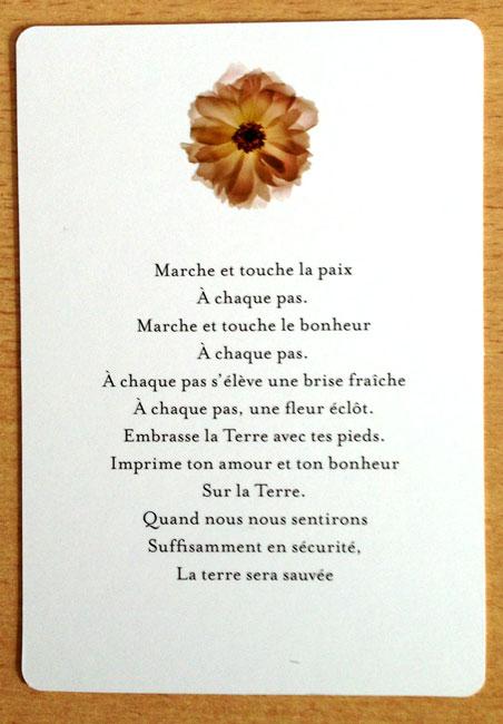 Les Tarots Divinatoires - Page 5 C_rosi10