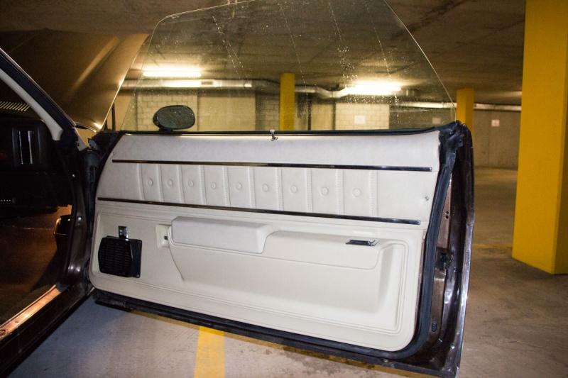 Dash Bezel and Lower Door Panel Doorpa10