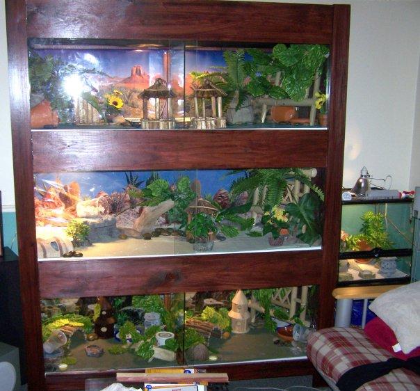 terrarium 3 étages pour gecko léopard... Viv_de10