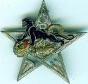 8e régiment de tirailleurs marocains Insign10