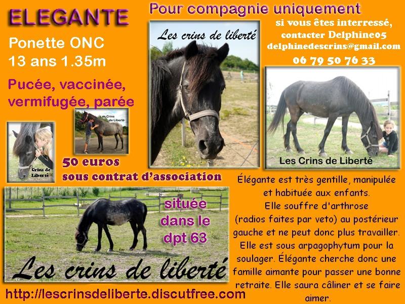 Dpt 63 - ELEGANTE, ponette contact Delphine -adoptée par Mr&Mme P (Juin2014) - Page 4 Elegan11