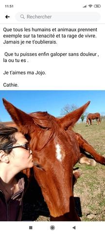 JOHANNA - SF  née en 1997 - adoptée en octobre 2010 par cat03 - Page 2 11759111