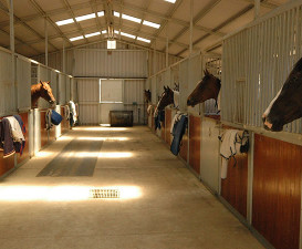 Main Stables 2007-131