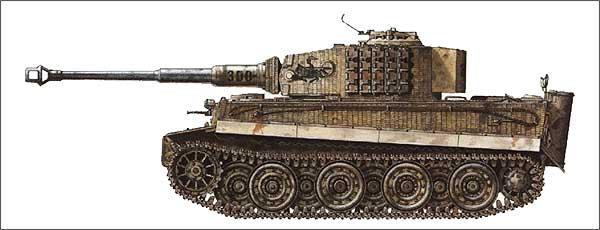 Avis Tigre I Tiger-10