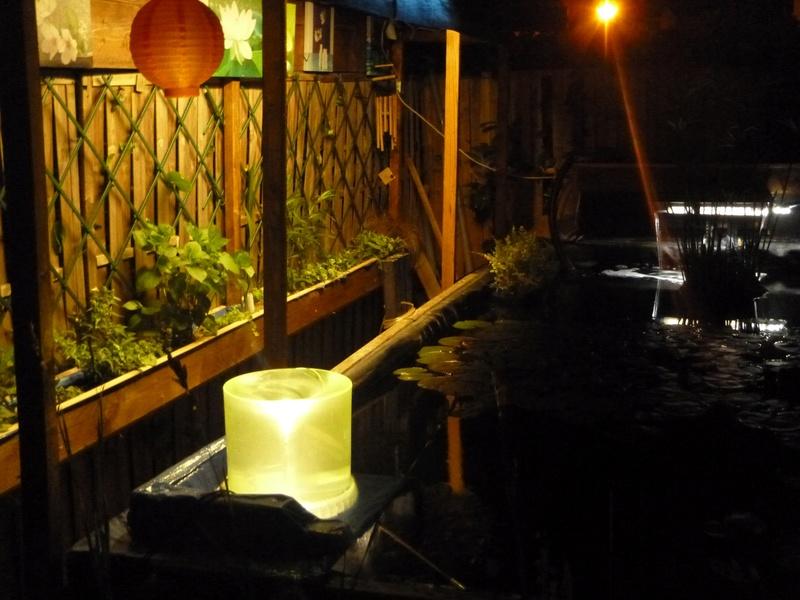 reamenagement de mon bassin de jardin - Page 10 21510