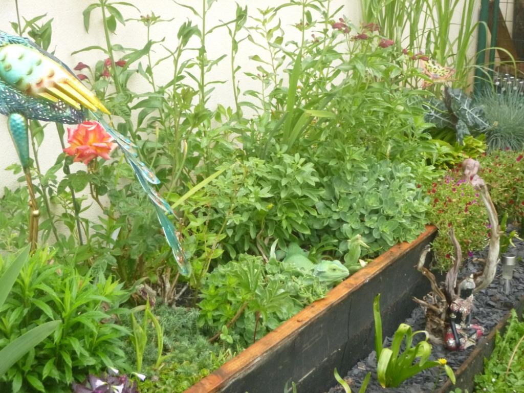 reamenagement de mon bassin de jardin - Page 11 P1020314