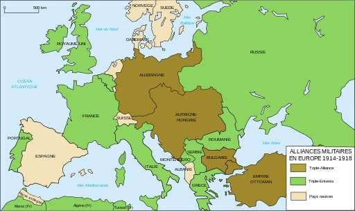 première guerre mondiale : Quelles en pnt été les causes ?  1be37510