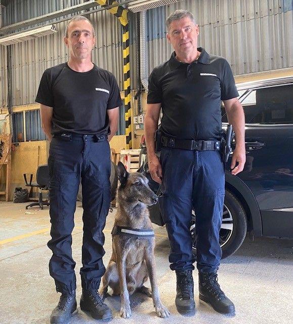 Narko   !  Le chien pisteur de la Gendarmerie du Gard eb retraite 860_th10