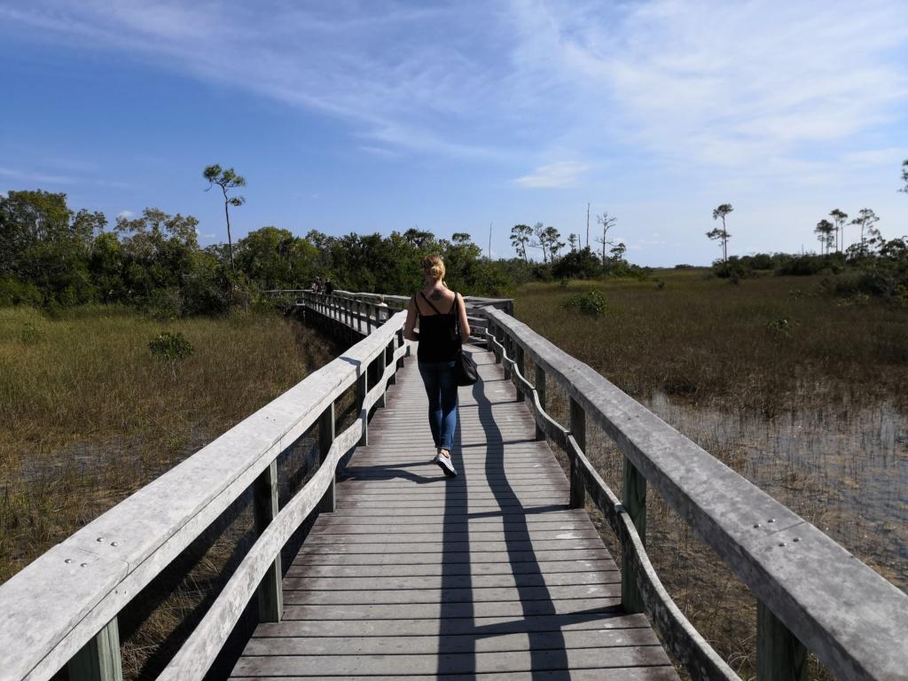 Inoubliable Floride- un rêve réalisé ! (février 2019) - Page 4 Img_2021