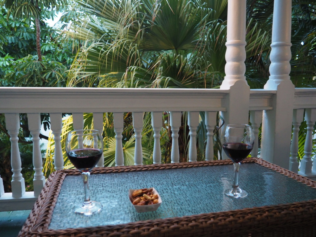 Inoubliable Floride- un rêve réalisé ! (février 2019) - Page 2 Oi000021