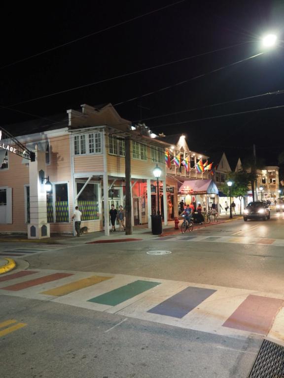 Inoubliable Floride- un rêve réalisé ! (février 2019) - Page 3 Oi000034