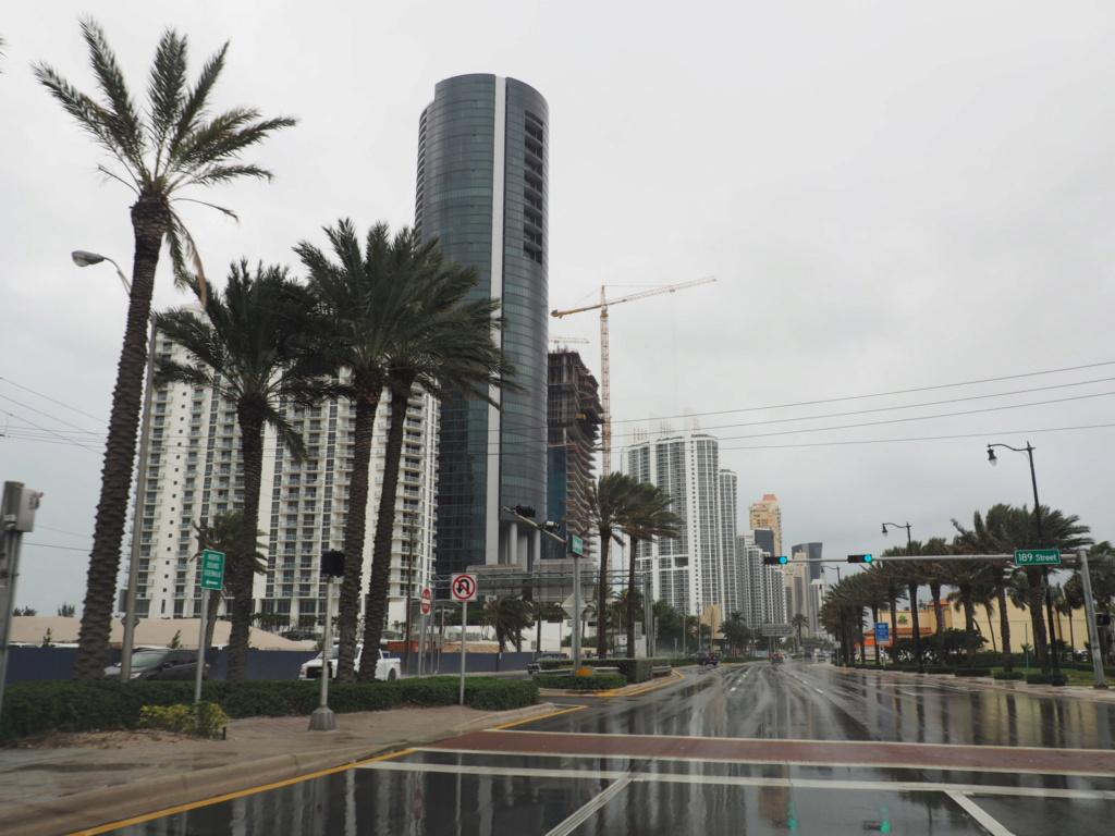 Inoubliable Floride- un rêve réalisé ! (février 2019) - Page 2 Oi000111