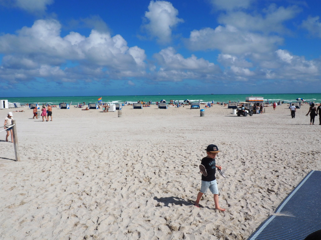 Inoubliable Floride- un rêve réalisé ! (février 2019) - Page 2 Oi000114