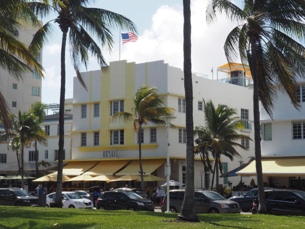 Inoubliable Floride- un rêve réalisé ! (février 2019) - Page 2 Oi000115