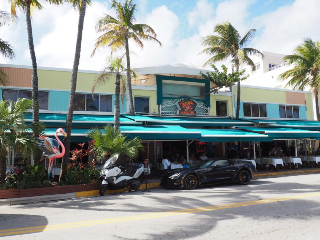 Inoubliable Floride- un rêve réalisé ! (février 2019) - Page 2 Oi000116