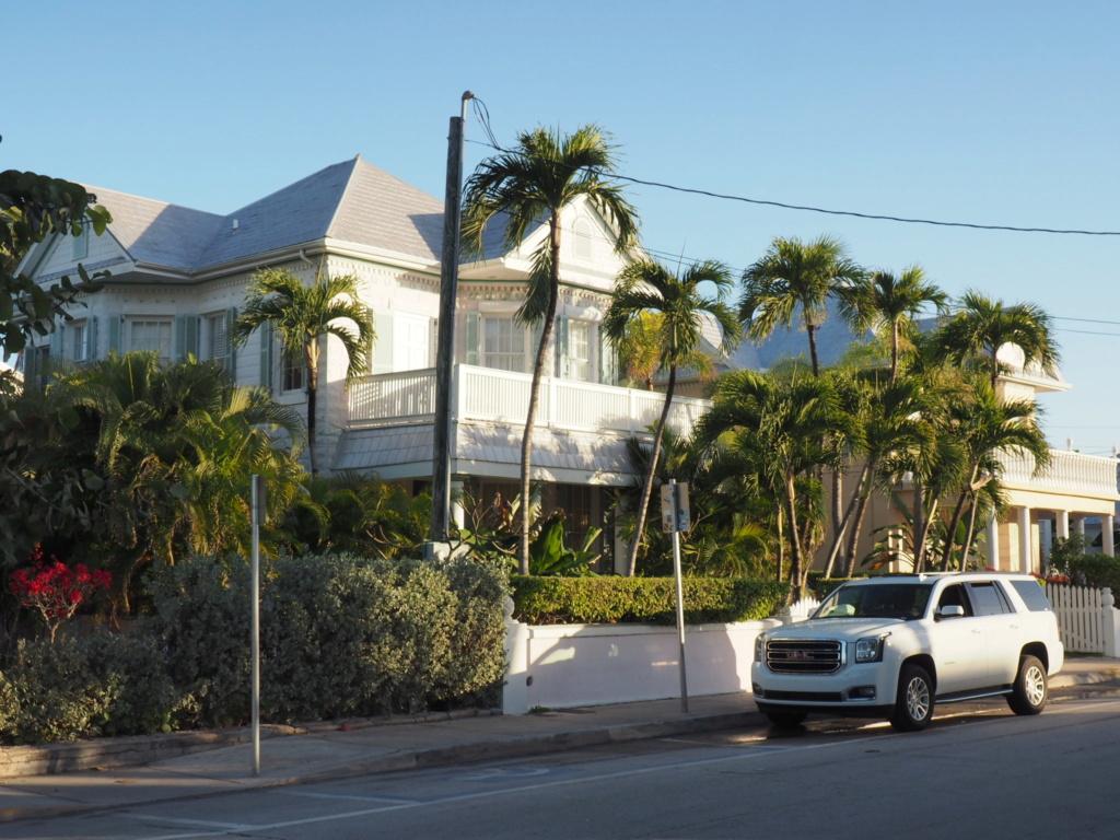 Inoubliable Floride- un rêve réalisé ! (février 2019) - Page 3 Oi000120