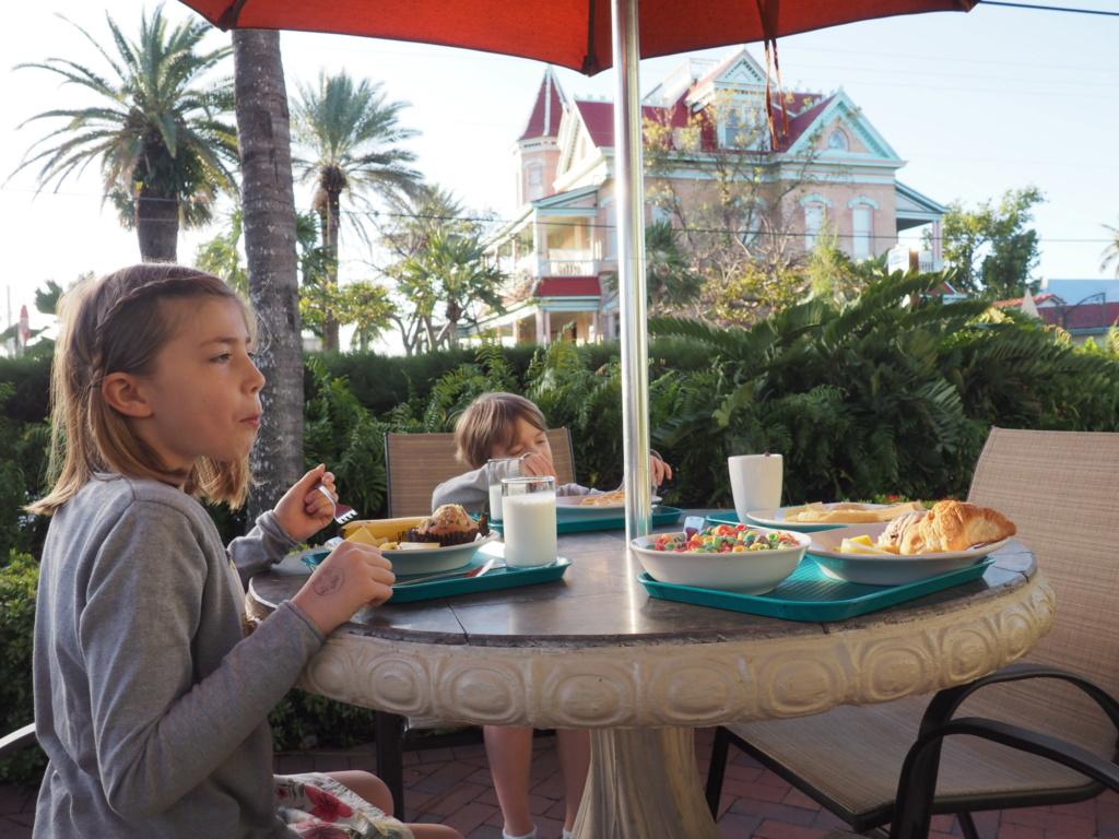 Inoubliable Floride- un rêve réalisé ! (février 2019) - Page 3 Oi000121