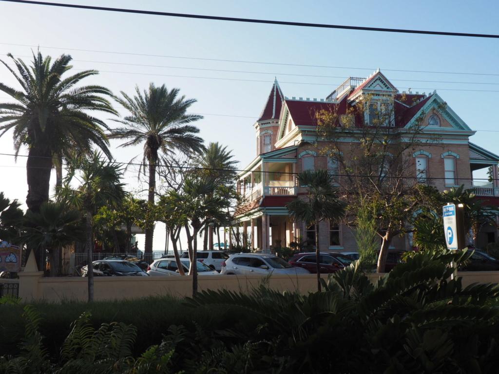 Inoubliable Floride- un rêve réalisé ! (février 2019) - Page 3 Oi000122