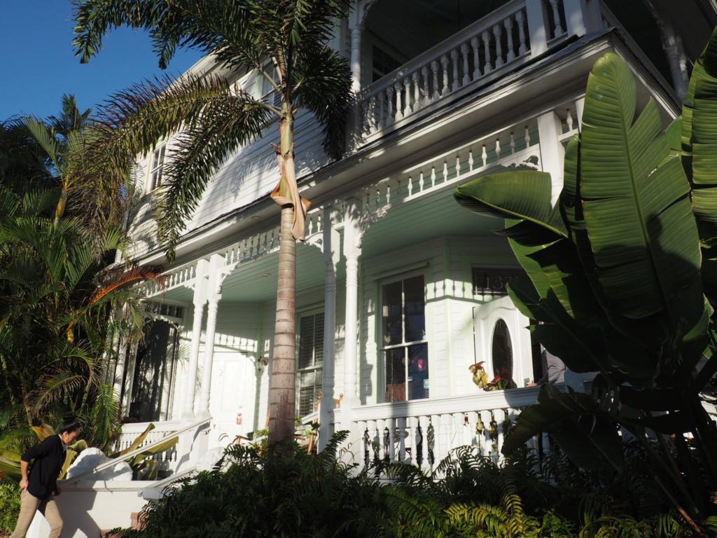 Inoubliable Floride- un rêve réalisé ! (février 2019) - Page 3 Oi000123