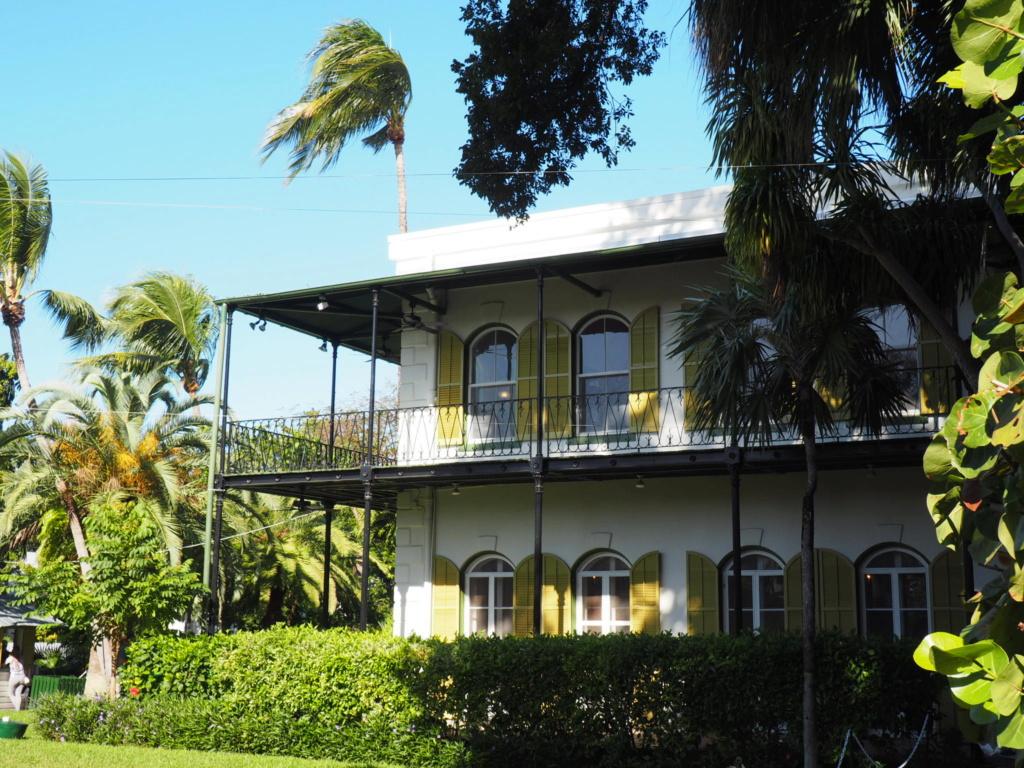 Inoubliable Floride- un rêve réalisé ! (février 2019) - Page 3 Oi000126