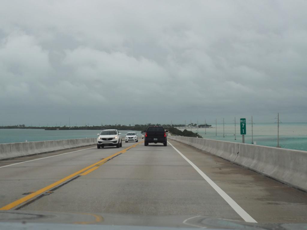 Inoubliable Floride- un rêve réalisé ! (février 2019) - Page 2 P2130316