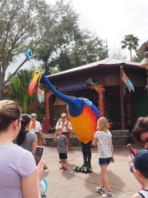 Inoubliable Floride- un rêve réalisé ! (février 2019) - Page 6 P2201510
