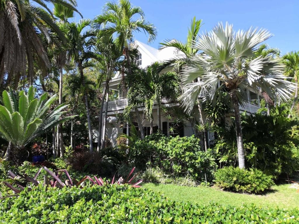 Inoubliable Floride- un rêve réalisé ! (février 2019) - Page 3 Receiv12