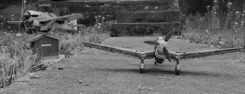Die Ju 87, der STUKA, 1/32, Trumpeter, von oluengen359 Cimg5773