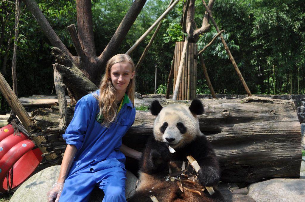 Panda, .......... un rêve devenu réalité 15325012