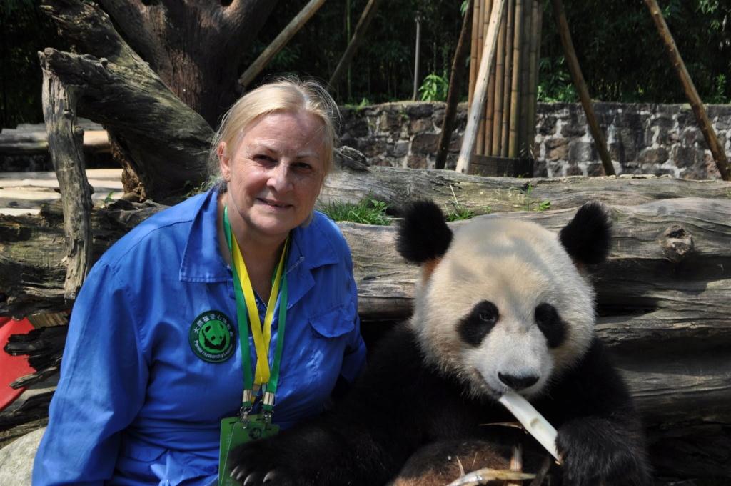 Panda, .......... un rêve devenu réalité Dsc_0111