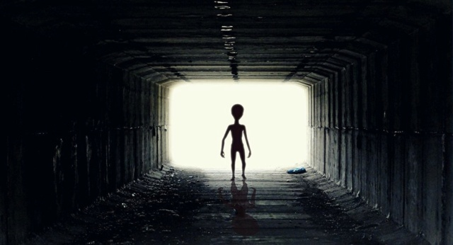 in mille a caccia di alieni 64934510