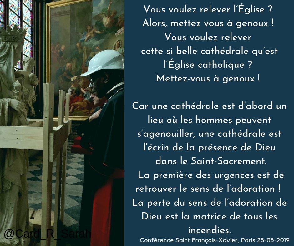 Notre Dame de Paris en flammes  - Page 15 Img_7610