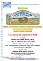 BOL D'AIR de l'ACMPA 22 Septembre à WY DIT JOLLI VILLAGE Affich11