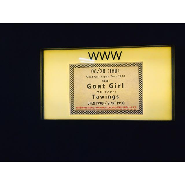 Goat Girl - rocky/grungy/punk - Rock oscuro y sutil - Escena sur de Londres - Página 4 35173310