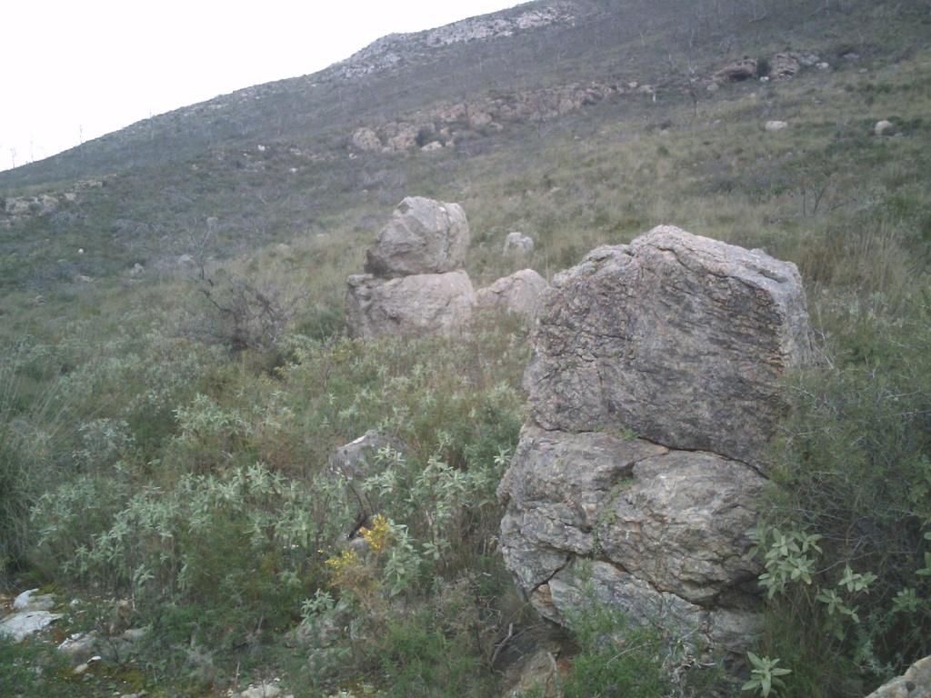 Busco arqueólogo para estudiar crómlech 2010-012