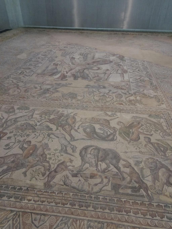 Museo de Palencia 2017-079