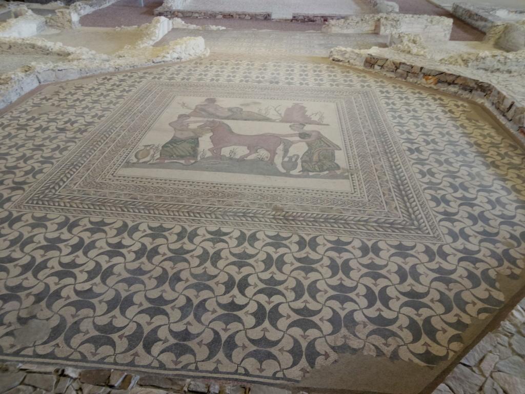 Museo de Palencia 2017-091