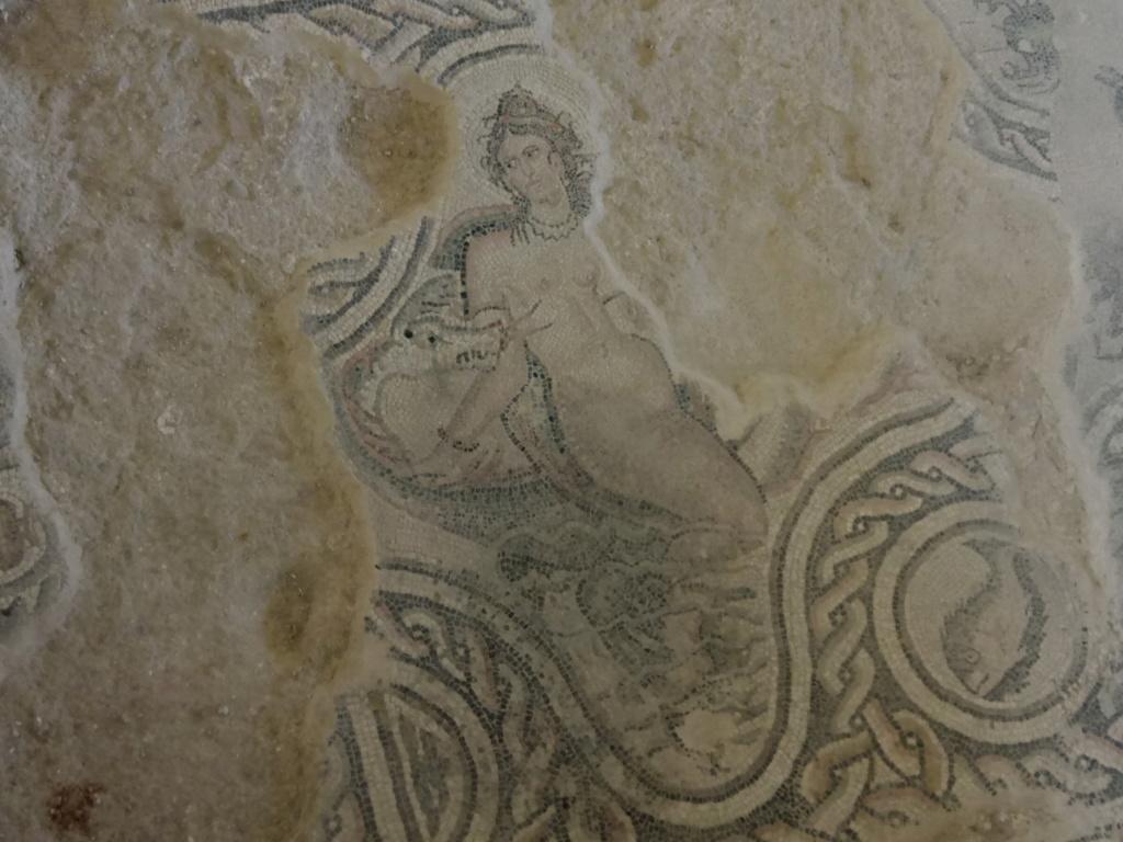 salar - Villa romana de Salar 2018-119