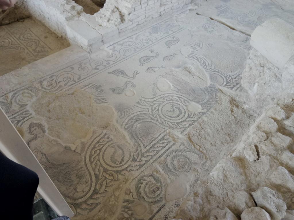 salar - Villa romana de Salar 2018-120