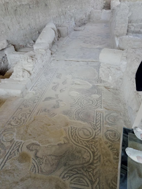 salar - Villa romana de Salar 2018-124