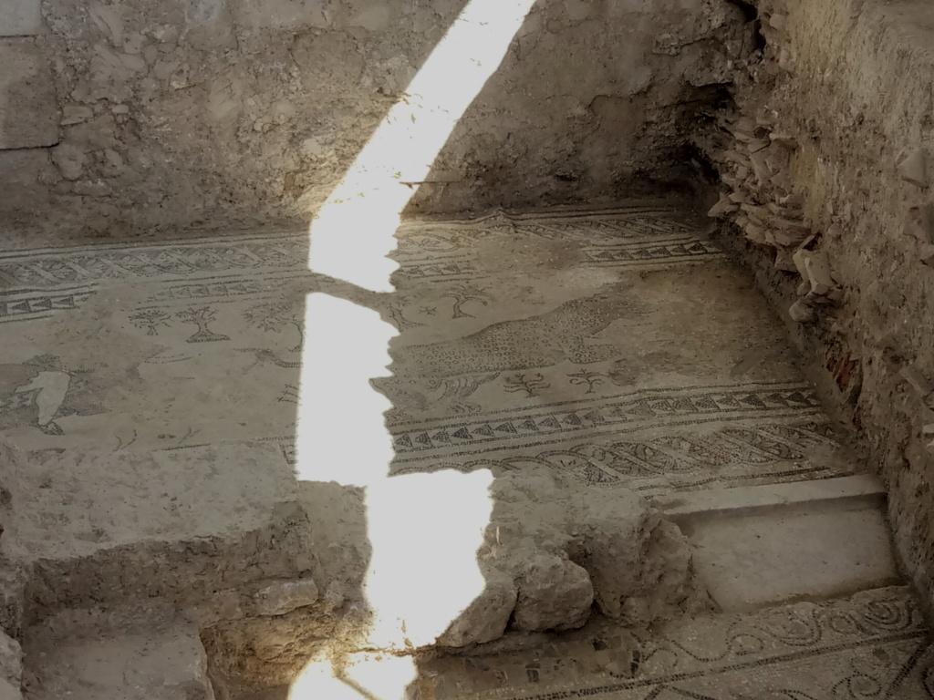 salar - Villa romana de Salar 2018-129