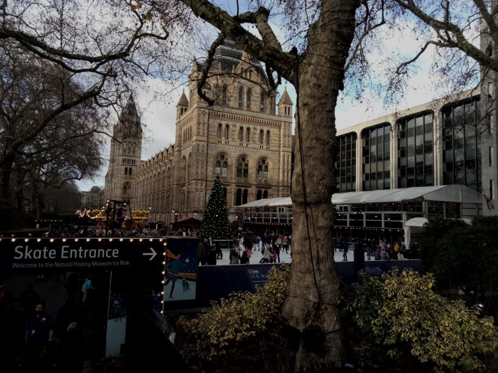 Museo de Historia Natural, Londres 2018-428